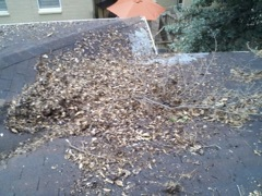 Get Your Dirty Gutters Cleaned by Kennesaw's Best Gutter Cleaners